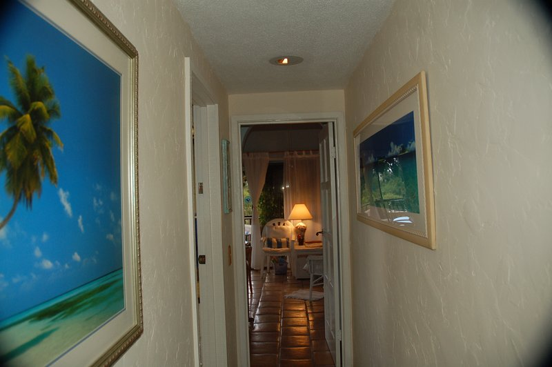 Hallway in Dolphin suite to main home.