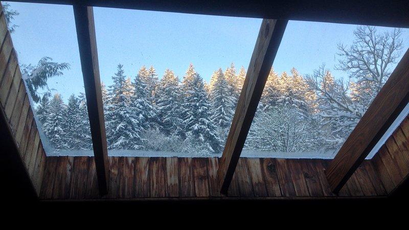 La vostra bella vista dal letto nel nido del gufo in inverno.