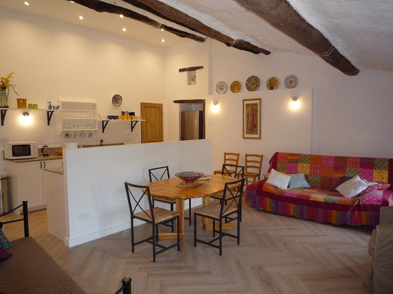 Le Vallespir apartment with roof terrace & views, vacation rental in Oms