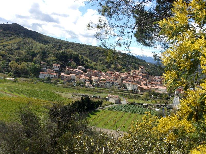 GITE DANS VILLAGE FORTIFIE ENTRE MER ET MONTAGNE, holiday rental in Ille-sur-Tet