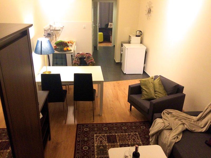 Living room, kitchenette, corridor, bedroom view