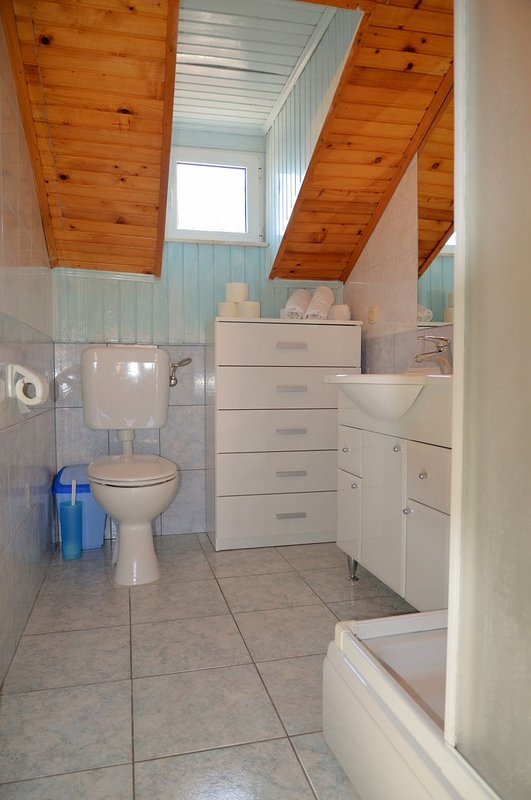 A1 (4 + 2): baño con inodoro