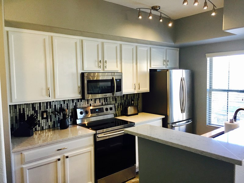 Fully remodeled and upgraded kitchen with LED track lighting.