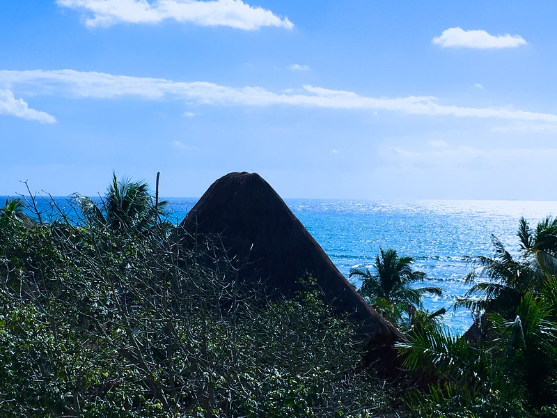 View from the rooftop infinity pool. Only a few palapa huts separate our building from the sea.