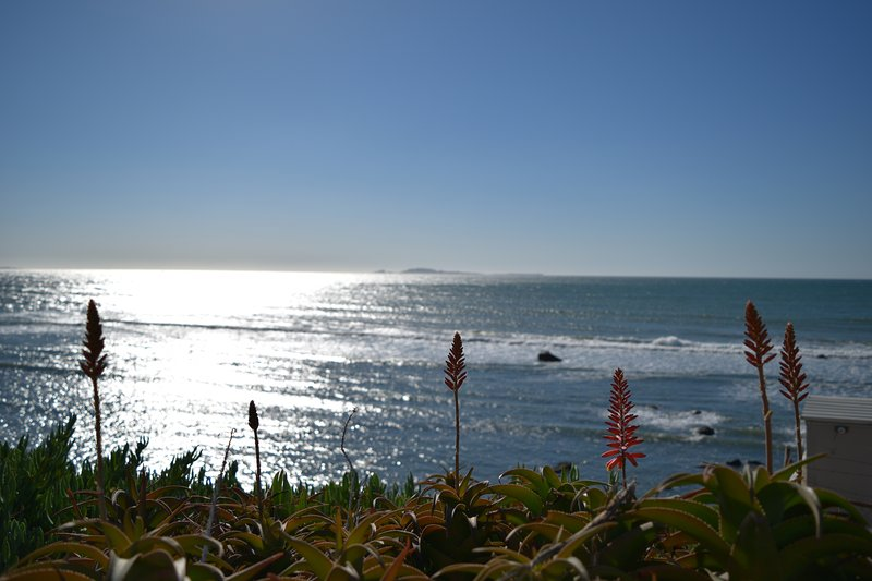 Cozy ocean front house with amazing views!, holiday rental in Villa de Juarez