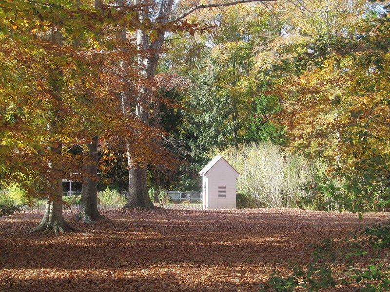 Outbuilding In The Fall