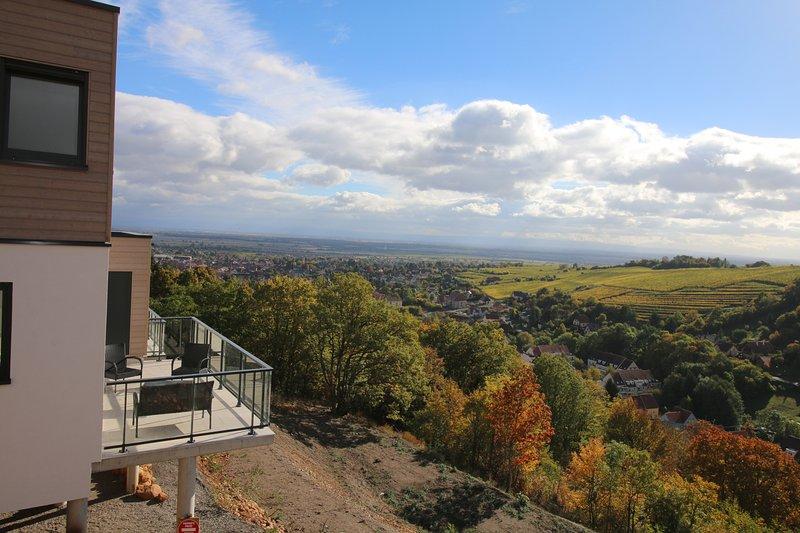 Sur la route des vins, au coeur de l'Alsace,  vue panoramique et calme assurée.