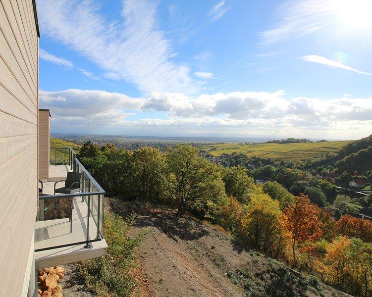 Sur la route des vins, au coeur de l'Alsace, des maisons de caractère avec vue panoramique.