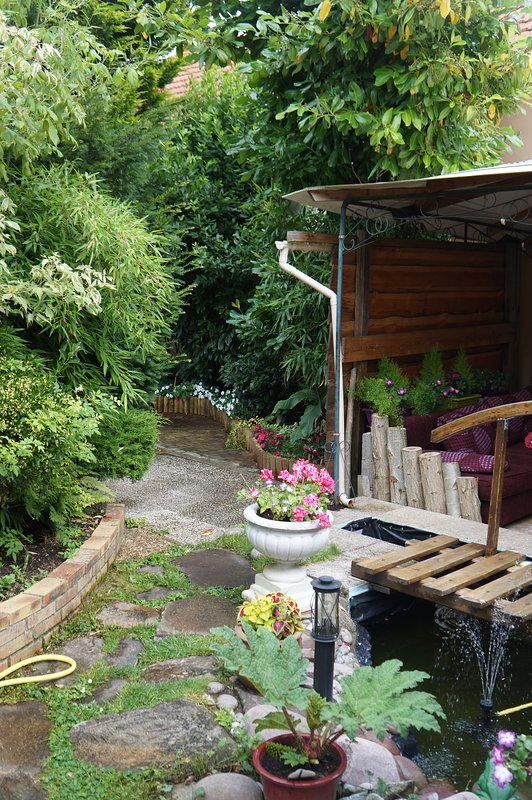 The patio near the small bridge, 2 sofas, coffee table, aquarium ...