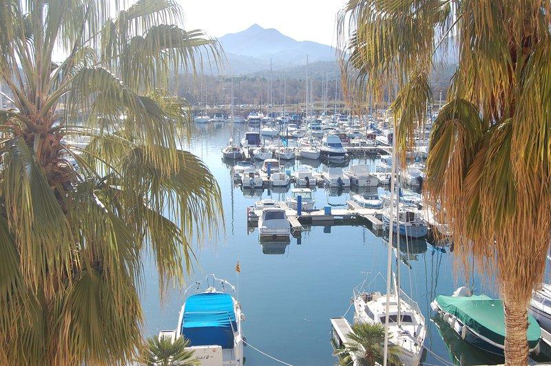 Vue exceptionnelle sur la montagne et le port, Ferienwohnung in Argeles-sur-Mer