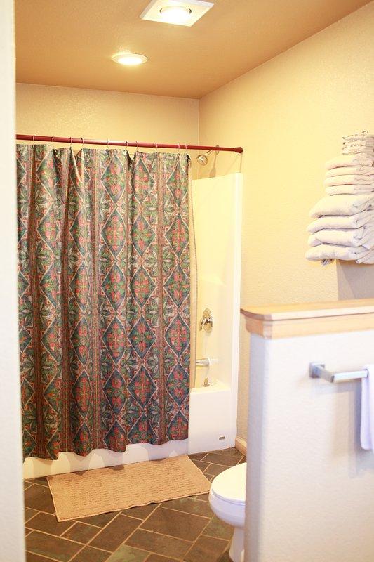 Amplio cuarto de baño con ducha y bañera