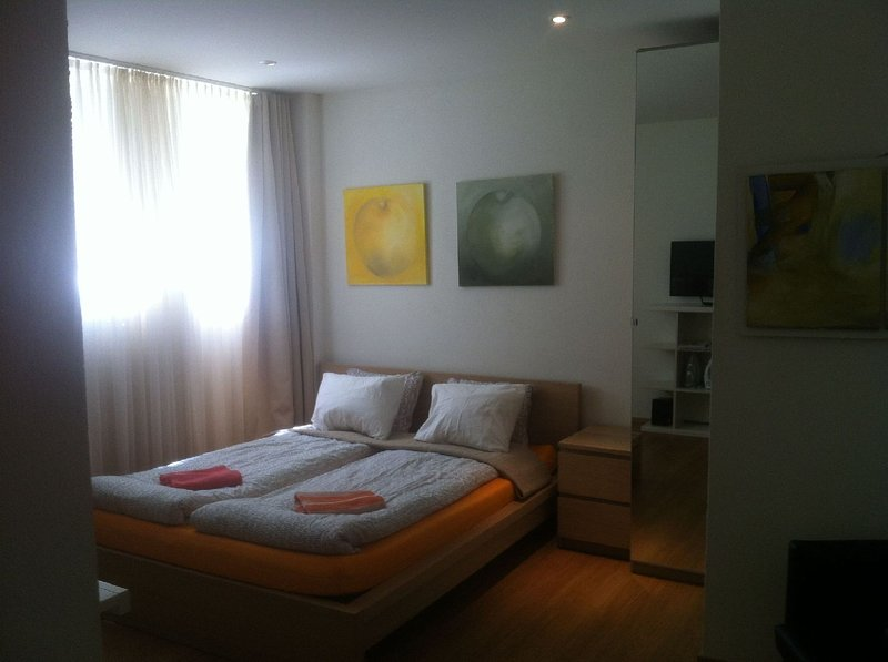 Toblerplatz Garden Studio Apartment 2, holiday rental in Meilen