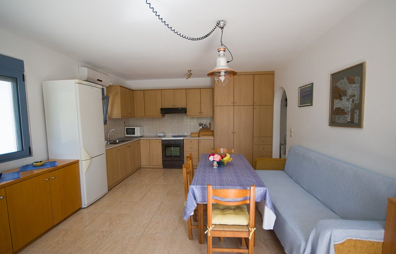 the living room-kitchen of the ground floor