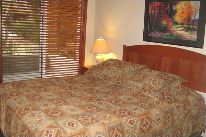 Bedroom Offers a Comfy Queen Bed