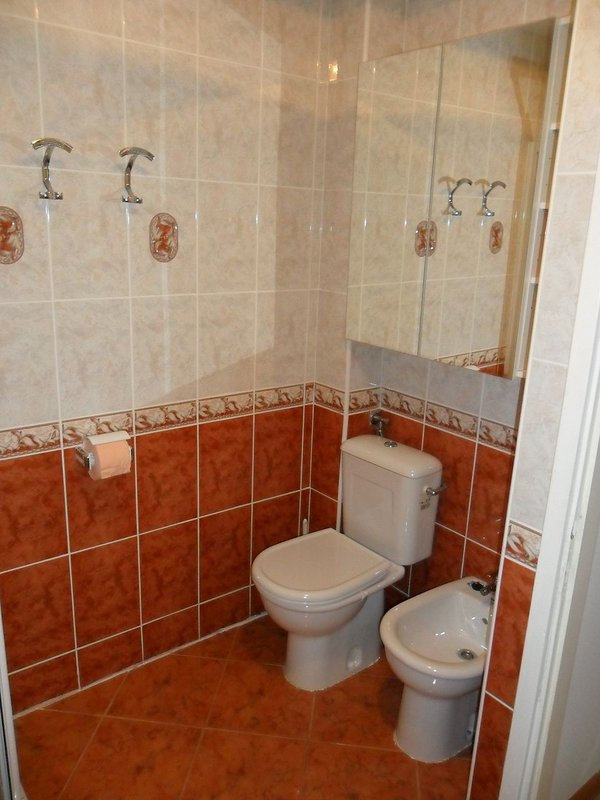A3 Lovor (4+1): bathroom with toilet