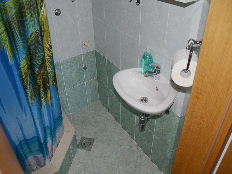 A1 (4): salle de bain avec WC