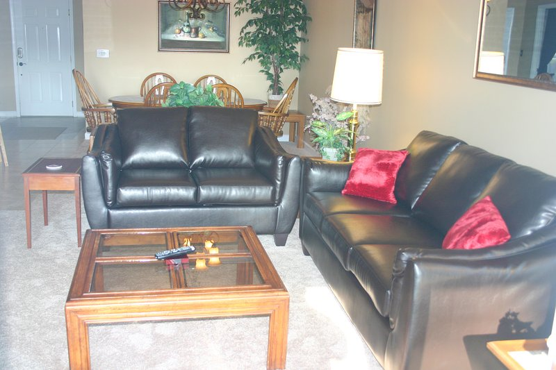 New sofa and love seat added in November 2016.