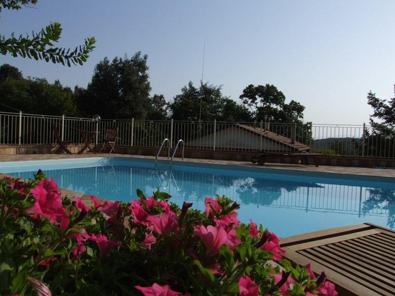 Polluce E, holiday rental in Sassetta