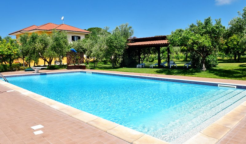 Swimming pool 7meters large by 14 meters long. It features: pergola, sun loungers, tables and chairs