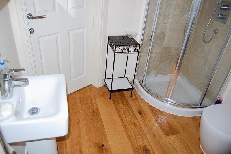 En la planta baja cuarto de baño con ducha