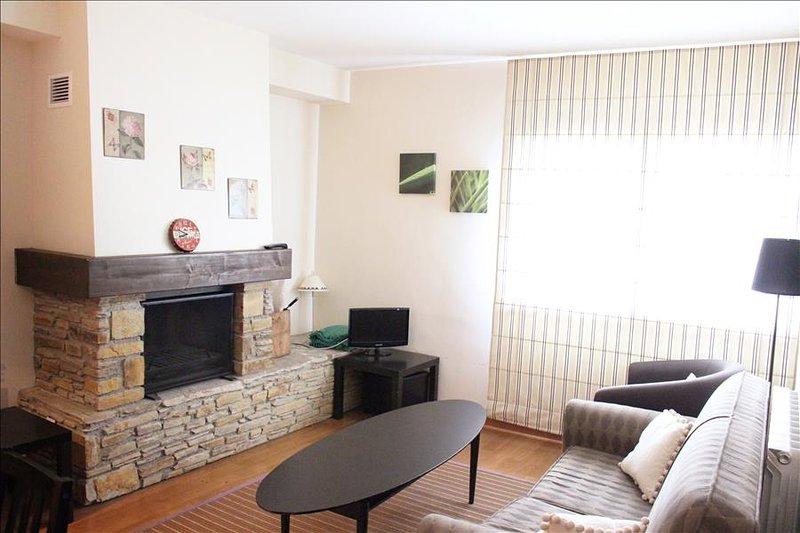 22BA - Apartamento de 2 dormitorios y 1 baño, holiday rental in Tramacastilla de Tena