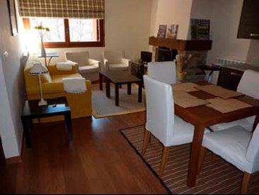 21BC - Apartamento de 2 dormitorios y 1 baño, holiday rental in Tramacastilla de Tena