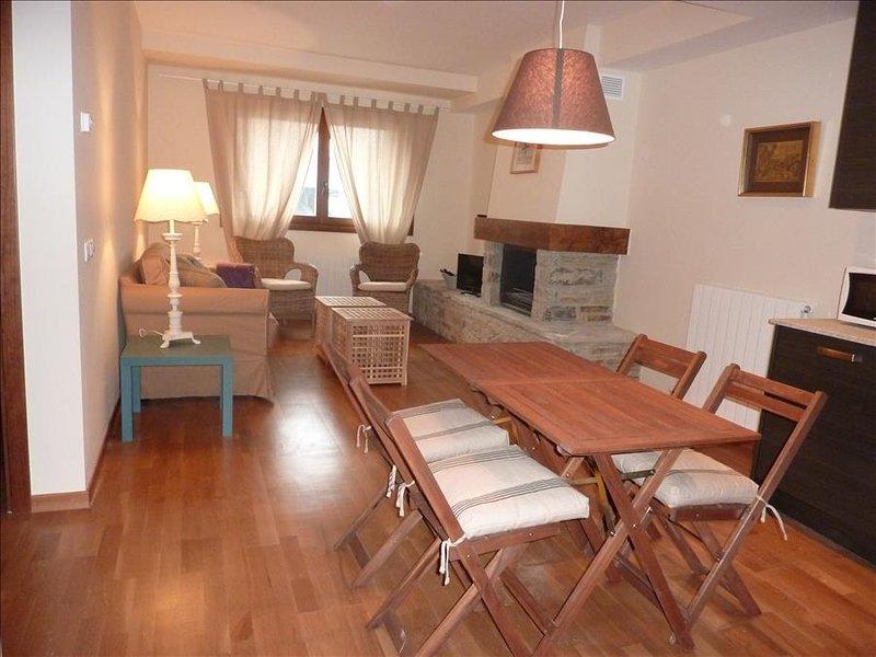 33BC - Apartamento de 2 dormitorios y un baño, holiday rental in Tramacastilla de Tena