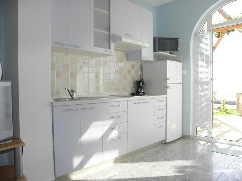 A2 Plavi (2+2): kitchen