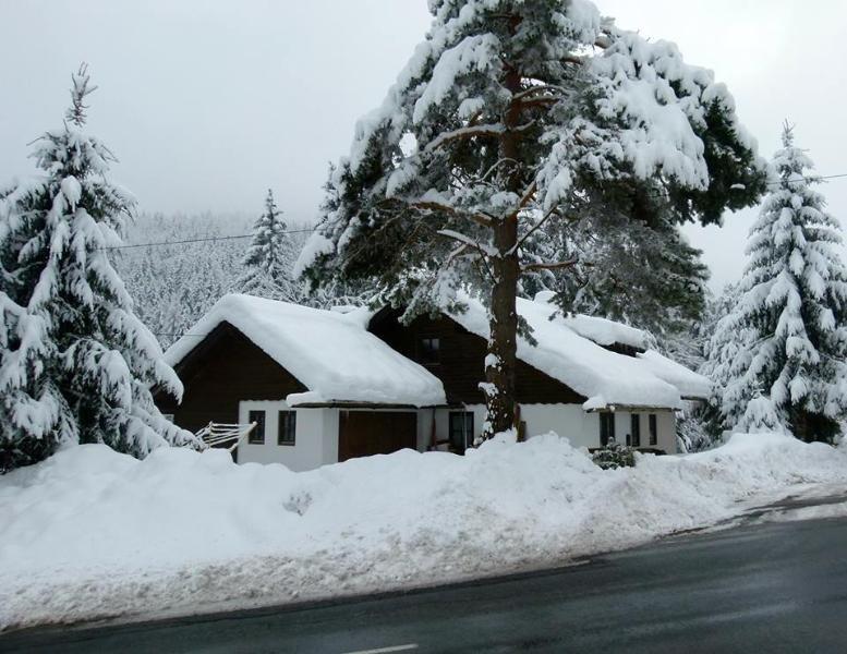 SnowRide.pro GuestRoom 1, holiday rental in Bad Bleiberg