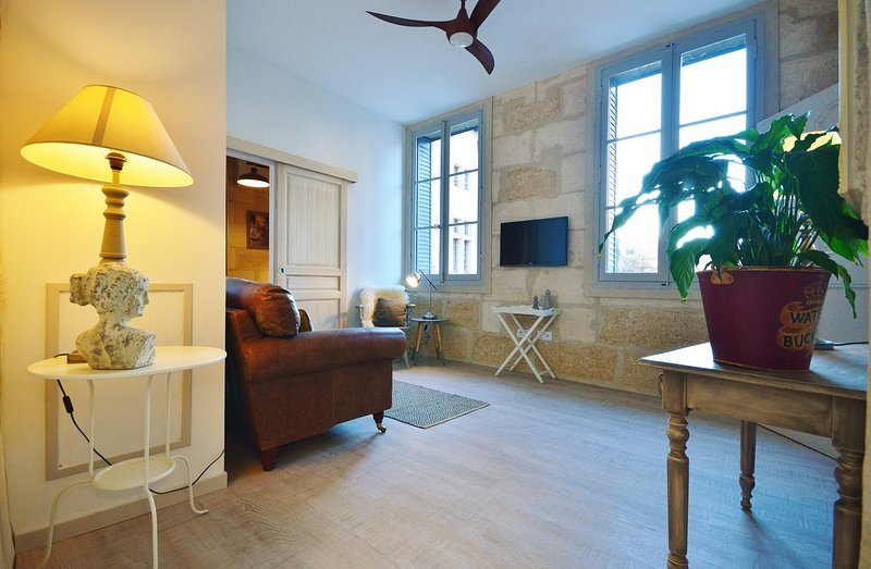 1st Floor apartment in a Parisien townhouse, facing the Ducal Palace, vacation rental in Uzes