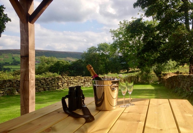 Celebrations on the lower garden at Dale View Barn
