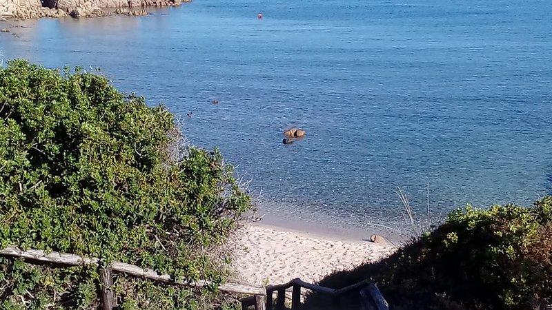 CostaRossa CostaParadiso Isolarossa NO wifi Wild Sardinia Sea mediterranen scrub, alquiler vacacional en Trinita d'Agultu e Vignola