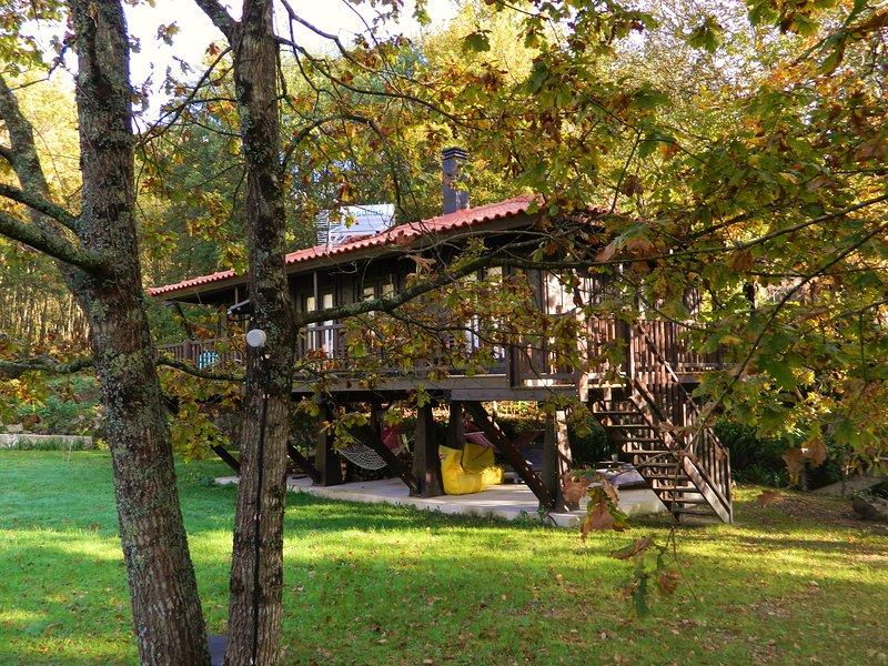 Tree house Quinta Lamosa