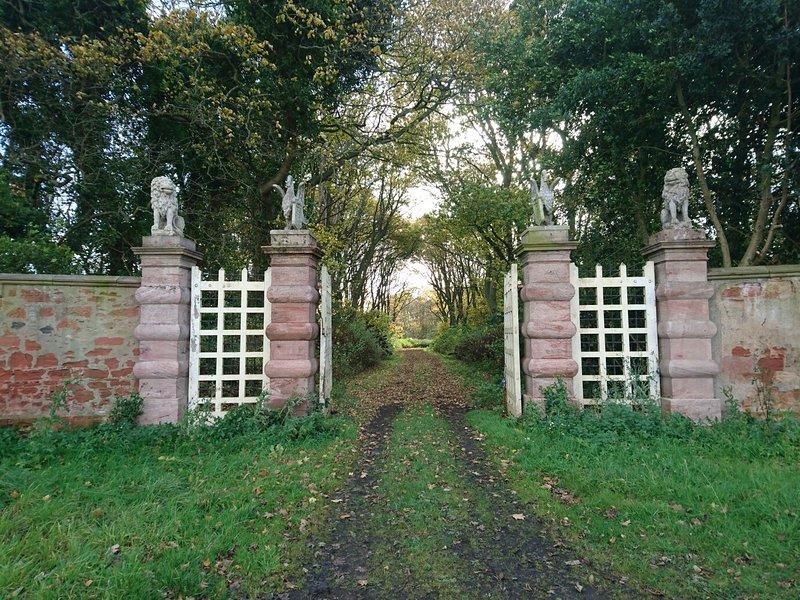 Una entrada a uno de los paseos del bosque.