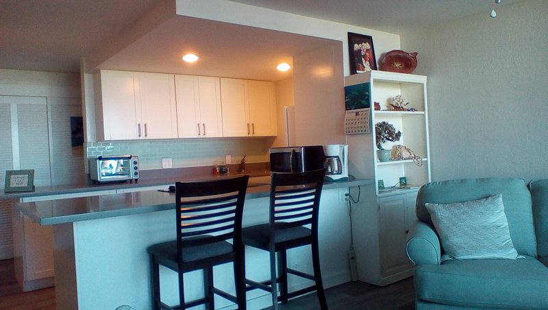 Newly updated condo, new flooring, kitchen and furniture.