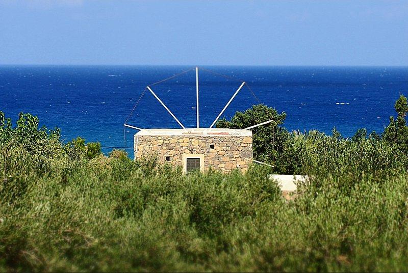 O moinho de vento é escondido dentro de um olival com vista para o mar