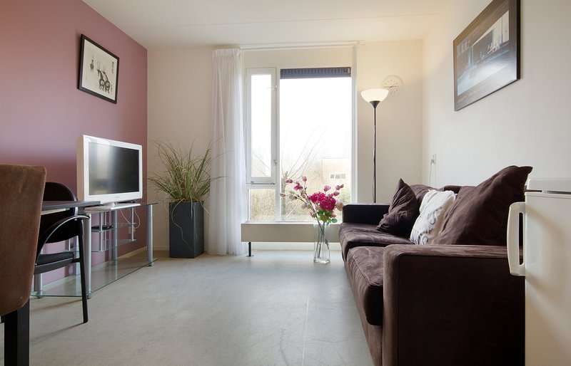 Spacious place with roofterrace, near centre, vacation rental in Sloten