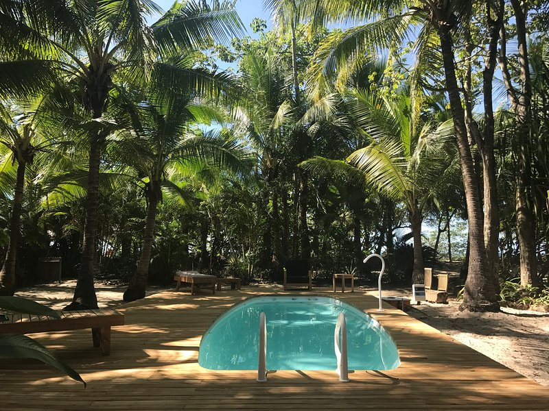 BEACHFRONT PALM VILLA with private pool at Santa Teresa Beach, holiday rental in Mal Pais