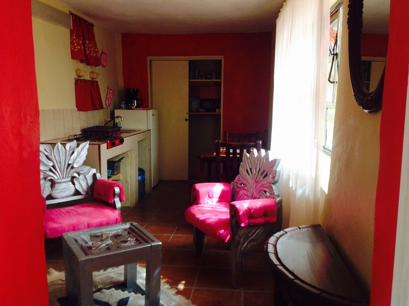 Apartment in central Guanajuato, holiday rental in Mineral de Pozos