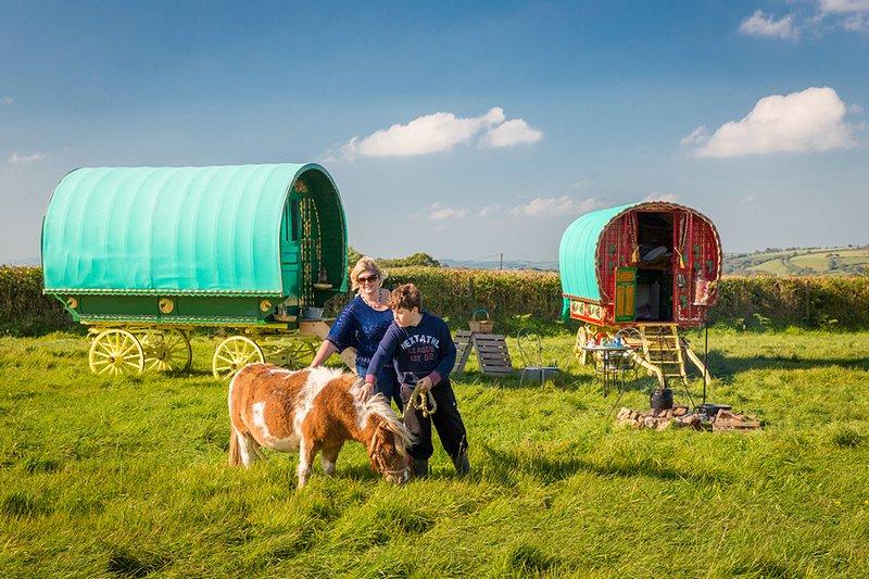 Calon Gypsy Wagons, holiday rental in Carmarthen