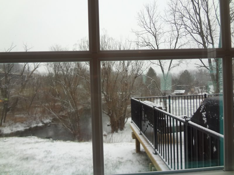 view from the kitchen window that overlooks Spring Creek