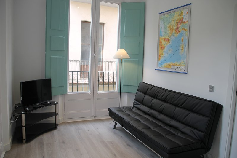 Apoteka apartaments , supercéntricos y muy luminosos.Pleno centro comercial., holiday rental in Figueres
