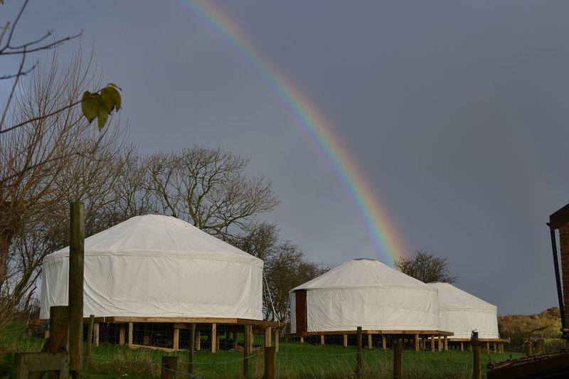 Rainbow over the enchanted woodland yurt