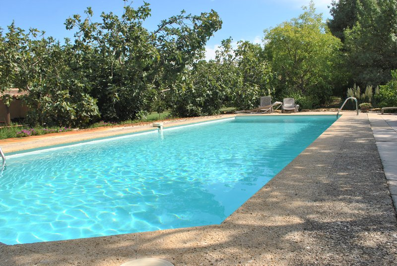 Big villa with swimming-pool & Wifi, holiday rental in Codolet