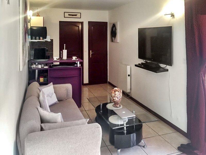 Nice studio with garden & terrace, holiday rental in Villemomble