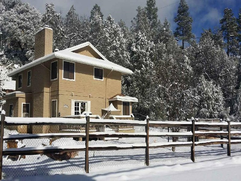 Cabin with snow. Fully fenced yard.