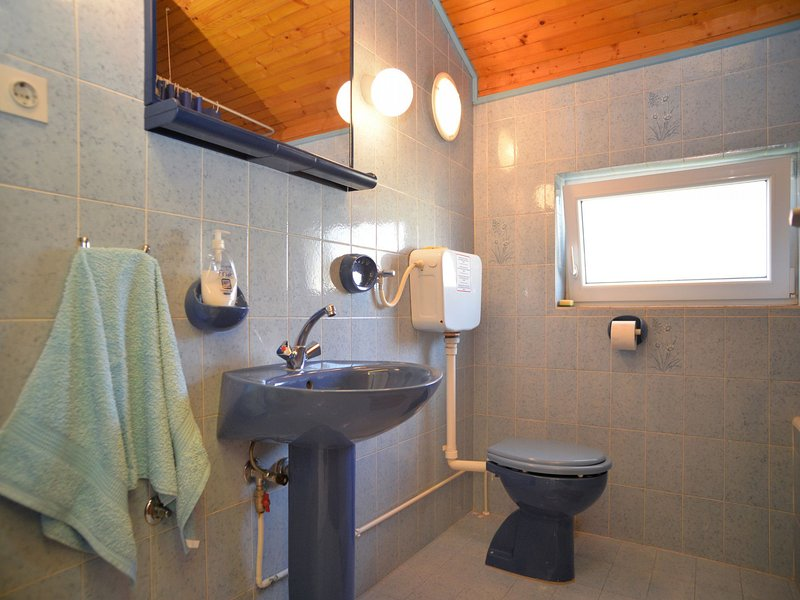 A2 (6+2): bathroom with toilet