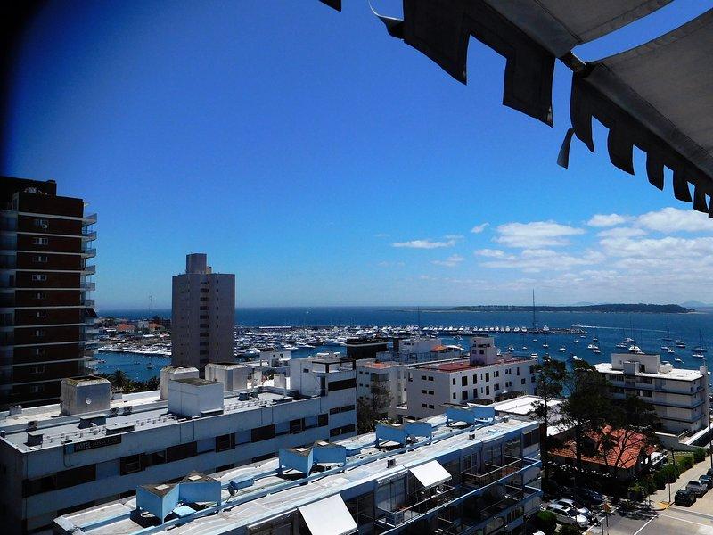 View to the port and Isla de Lobos
