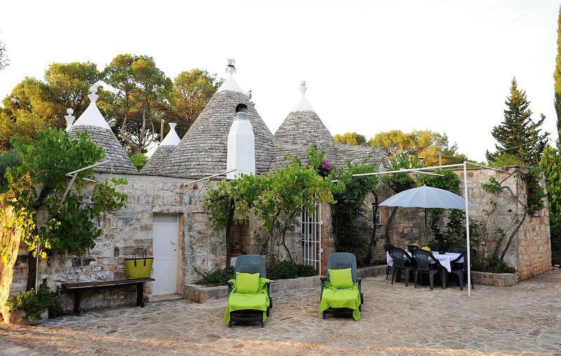 Beautiful house with garden, holiday rental in Tanzarella