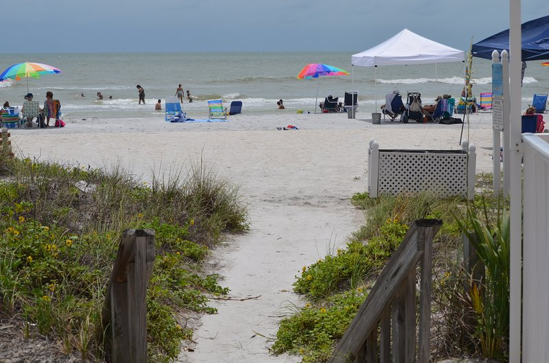 The Beach is just a few steps across the road!